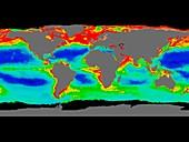 Global chlorophyll levels,1997-2000