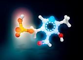 Pyridoxal phosphate molecule