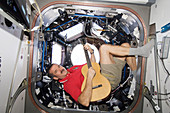Chris Hadfield,Canadian astronaut