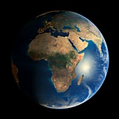 Earth's deforestation,2000-2012