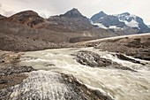 Meltwater on Athabasca glacier