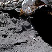 Apollo 15 gravity demonstration