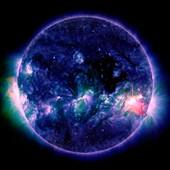 Solar flare,composite SDO image