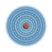 Americium,atomic structure