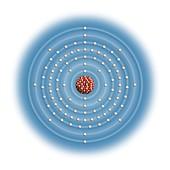 Berkelium,atomic structure