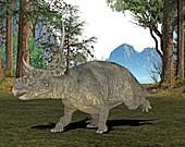 Diabloceratops dinosaur,illustration