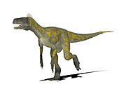 Herrerasaurus dinosaur,illustration
