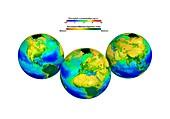 Global chlorophyll distribution