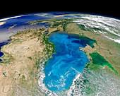 Black Sea phytoplankton bloom,2012