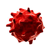 Abnormal red blood cell,illustration