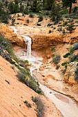 Bryce Canyon National Park,USA