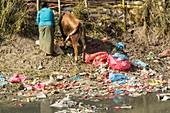 Bishnumati River,Kathmandu
