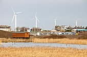 Wind turbines behind Siddick Pond