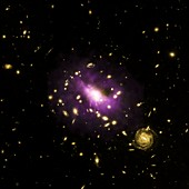 Galaxy cluster RX J1532,composite image