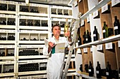 INRA wine collection,France