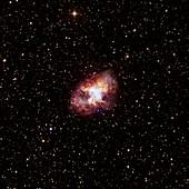 Crab Nebula,optical image