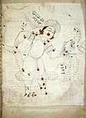 Ophiuchus constellation,13th century