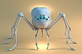 Nanobot spider,illustration