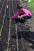 Child planting onions