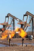 Gas flares at an oil field