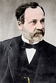 Louis Pasteur,French microbiologist