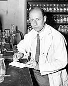 Curt Stern,German-US geneticist
