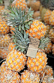 Pineapples for sale