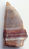 Sardonyx,a form of chalcedony,close-up