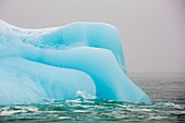 An iceberg from a glacier