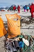 Tourists collect plastic rubbish