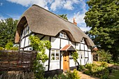 old thatched house in Elmley Castle