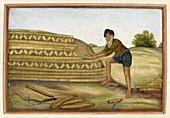 Indian brickmaker,illustration