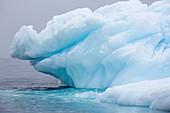 Icebergs in Wilhelmina Bay