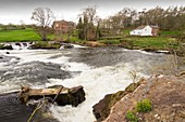 Waterfalls on the River Eden