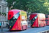 New Routemaster bus,London,UK