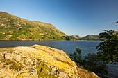 A rocky island on Ullswater