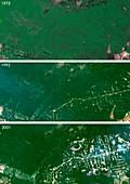 West Rondonia,Brazil,deforestation