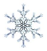 Snowflake,light micrograph