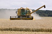 A combine harvester in Weybourne,UK