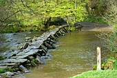 Tarr Steps,Exmoor,UK