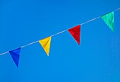 Bunting against a blue sky