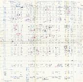 Nirenberg's genetic codon table,1965
