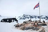 Port Lockroy,Antarctica