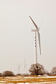 Wind farm,China