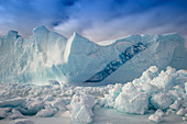 Arctic iceberg in sea ice