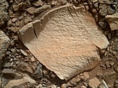 High-silica rock on Mars,Curiosity image