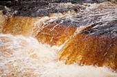Aysgarth Falls at Aysgarth