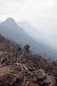 Smoke haze from wildfire