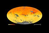 Global carbon monoxide levels,April 2013