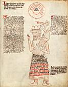 Allegorical medicine,15th century